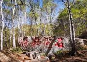 北大山石海森林公园