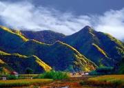 茅荆坝国家森林公园-最美的秋色
