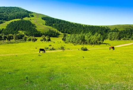 京北第一草原景区